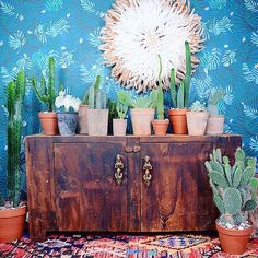 Excuse me while I'm in #cactus & #wallpaper bliss over here /justinablakeney/ your #vibrant and #luscious wallpaper is what #boho #dreams are made of, always a #major #inspo of mine! #bohodecor #bohostyle #bohovibes #bohemian #textile #design #interiordesign #interiorstyle #interiordecor #jungalowstyle #texture #succulent #finditstyleit #interiors #jungalow #travel #apartmenttherapy #currentdesignsituation #pocketofmyhome #bu