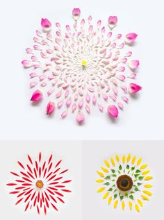 Exploded flowers by Fong Qi Wei - pretty cool