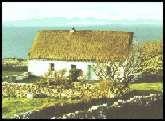 Leitrim-Roscommon Genealogy. Irish ancestry.