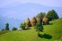 Haystacks Romanian People, Site History, Eastern Europe, Places To Travel, Vineyard, Landscape, Outdoor, Beautiful, Romania