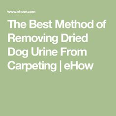 The Best Method of Removing Dried Dog Urine From Carpeting | eHow