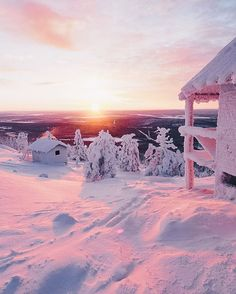 Pink winter light in Levi, Lapland, Finland