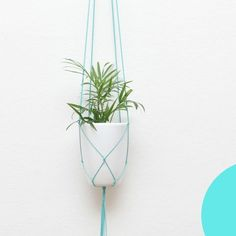 Modern Macrame Hanging Planter, fun decor idea for flowers, succulents and air plants.