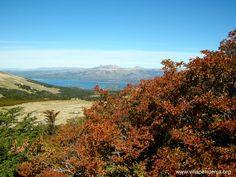 se acerca el #otoño2016 en #VillaPehuenia #Patagonia www.villapehuenia.org Villa Pehuenia, Patagonia, Mountains, Nature, Travel, Argentina, Colors, Naturaleza, Voyage