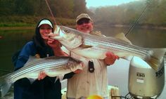 Here we have two large Striper that were caught on lake Lanier Fishing Places, Going Fishing, Places To Go, Usa, U.s. States