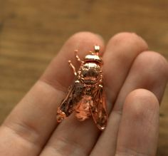 Copper gadfly real insect metal plated electroform by Galvanart