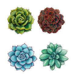 "Succulents watercolor painting print 8"" x 10"""
