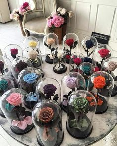 rose, flowers, and colors image Fleurs Diy, Forever Rose, Luxury Flowers, How To Preserve Flowers, Arte Floral, Flower Boxes, Beauty And The Beast, Diy Gifts, Floral Arrangements