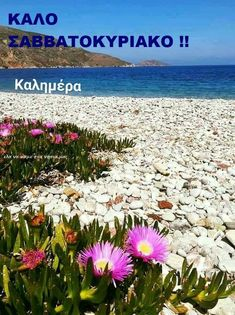 Good Night, Good Morning, Greek Language, Weekend Fun, Beach, Water, Day, Outdoor, Nighty Night