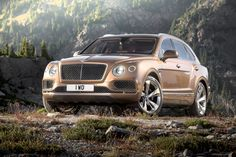 Bentley Bentayga's Success Could See The Development Of More Derivatives