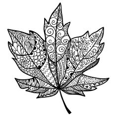 Find Doodle Textured Maple Leaf Raster stock images in HD and millions of other royalty-free stock photos, illustrations and vectors in the Shutterstock collection. Thousands of new, high-quality pictures added every day. Fall Coloring Pages, Adult Coloring Pages, Herbst Tattoo, Maple Tree Tattoos, Doodle On Photo, Leaf Outline, Autumn Art, Zentangle Patterns, Zentangles