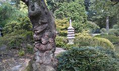 Shofuso Japanese Gardens, Phila.,Pa