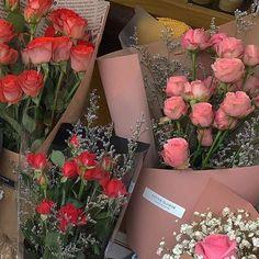 flowers, bouquet és tulips kép a We Heart It oldalon My Flower, Beautiful Flowers, Prettiest Flowers, Plants Are Friends, A Silent Voice, No Rain, Flower Aesthetic, Mother Nature, Planting Flowers
