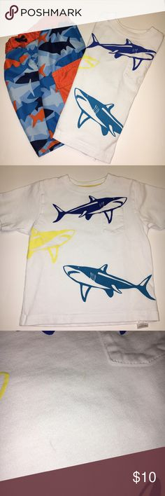 (2) Swim Shark Bundle - Trunks & T-Shirt Such an adorable outfit for your little prince and just in time for summer! The trunks are Carter's and in very good condition. Netting underwear inside, as pictured. The shirt is a t-shirt/not a rash guard and made by Kitestrings. Shirt has tiny pen mark, also as pictured. Swim