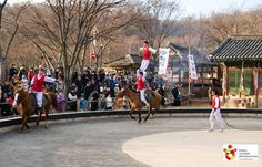 Korea_horseback stunts(마상곡예,말타기)