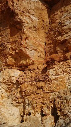 Vista general pinturas rupestres Roca Benedí Jaraba