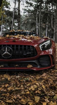 Ferrari red Mercedes-AMG GT in the forest. High-end luxury sport cars Mercedes Benz Amg, Carros Mercedes Benz, Mercedes Auto, Benz Suv, Merc Benz, Carros Audi, Carros Lamborghini, Lamborghini Cars, Bmw Cars