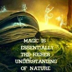 Magic and fantasy in the forest or in the book? / Magia y fantasia en el bosque… Fantasy Magic, Fantasy Art, Fantasy Story, Believe In Magic, Story Time, Art Story, Mother Earth, Oeuvre D'art, Fairy Tales
