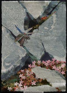 Black-tailedSkimmeronGranite by Amanda Richardson