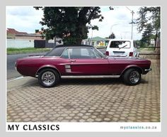 1967 FORD MUSTANG  classic car