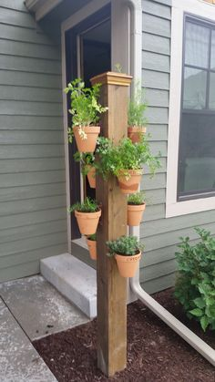 Vertical herb garden in clay pots on a pole using hangapot, the hidden flower pot hanger.