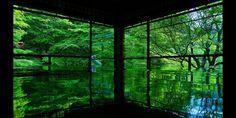 「瑠璃光院」の画像検索結果
