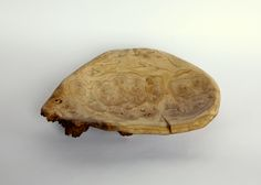 Rescued from a firewood pile, with hand shaped interior and natural exterior, this bowl features organic lines, and nicely figured graining. Organic Lines, Hand Shapes, Natural Forms, Turtle, Nature, Projects, Turtles, Naturaleza, Tortoise