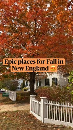 Travel Goals, Travel Tips, Landscape Photography, Travel Photography, Boston Things To Do, New England Fall, Us Travel Destinations, Autumn Scenery, Road Trip Usa