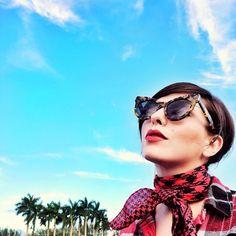d411cb378a54 460 Best Cute Sunglasses images