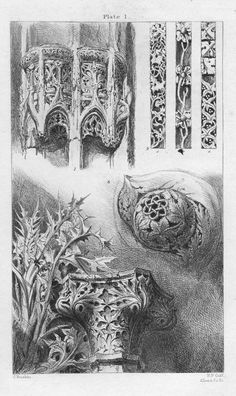 John Ruskin, The Seven Lamps of Architecture, 1855. Ornaments from Rouen, St. Lô, and Venice. R. P. Cuff, engraver. Scanned by George P. Landow for victorianweb.org.