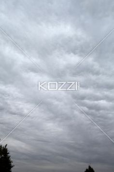 cumulus storm clouds. - View of cumulus storm clouds.