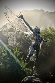 http://www.eclectitude.com/2014/07/wire-fantasy-sculptures-by-robin-wight.html