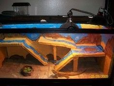 Wow, this is an awesome bearded dragon cage!