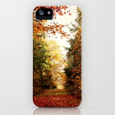 morning walk iPhone Case by Sylvia Cook Photography - $35.00