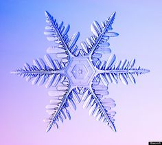 snowflakes - Yahoo Search Results
