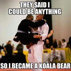 Koala guard