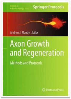 Methods in Molecular Biology Vol.1162 Axon Growth and Regeneration Methods and Protocols | Sách Việt Nam