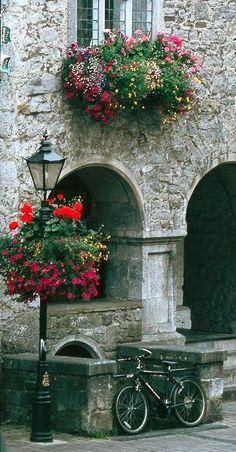 ~ Rothe House.. Kilkenny city, Ireland ~