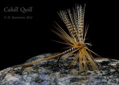 Cahill-Quill-Stack4-FB.jpg (860×614)