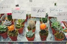 Risultati immagini per bomboniere piante grasse fai da te
