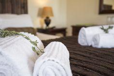 Escape freezing weather to balmy Lowveld days in Mpumalanga at Nabana Lodge
