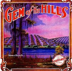 Clermont Florida Gem of the Hills Orange Citrus Fruit Crate Label Art Print