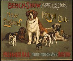 animal poster, classic posters, dog, free download, graphic design, retro prints, vintage, vintage posters, wildlife, Bench Show, New England Kennel Club - Vintage Dog Poster