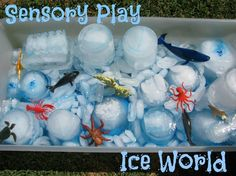 Sensory Play - Ice World...I would add animals that live in Polar Regions or colored water & eye droppers so the kids can use that to color the ice!