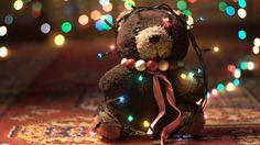 Teddybear with Christmas Lights