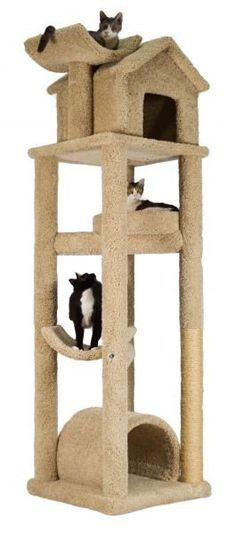 Molly and Friends Skyscraper is a premium handmade, high quality cat tree with a beautifully designed cat condo (made with large cats in mind), Modern Cat Furniture, Pet Furniture, Cat Tree Condo, Cat Condo, Cat Tree Designs, Large Cat Breeds, Cat Gym, Cool Cat Trees, Cat Activity
