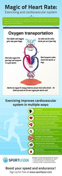 When you exercise you start gasping air and your heart beats faster. We have composed this infographic to explain why does this happen to you and how