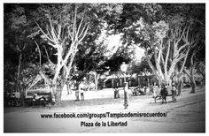 La Plaza de La Libertad