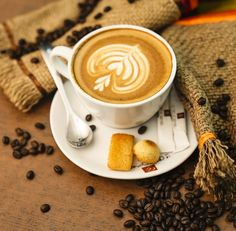 Coffee Box, Coffee Heart, Best Coffee, Buy Coffee Beans, Fresh Coffee Beans, Creative Logo, Barista, Logo Café