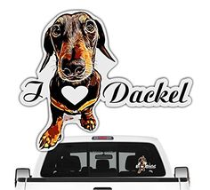 Darth Vader, Amazon, Fictional Characters, Autos, Car Decals, Weenie Dogs, Pet Dogs, Amazons, Riding Habit